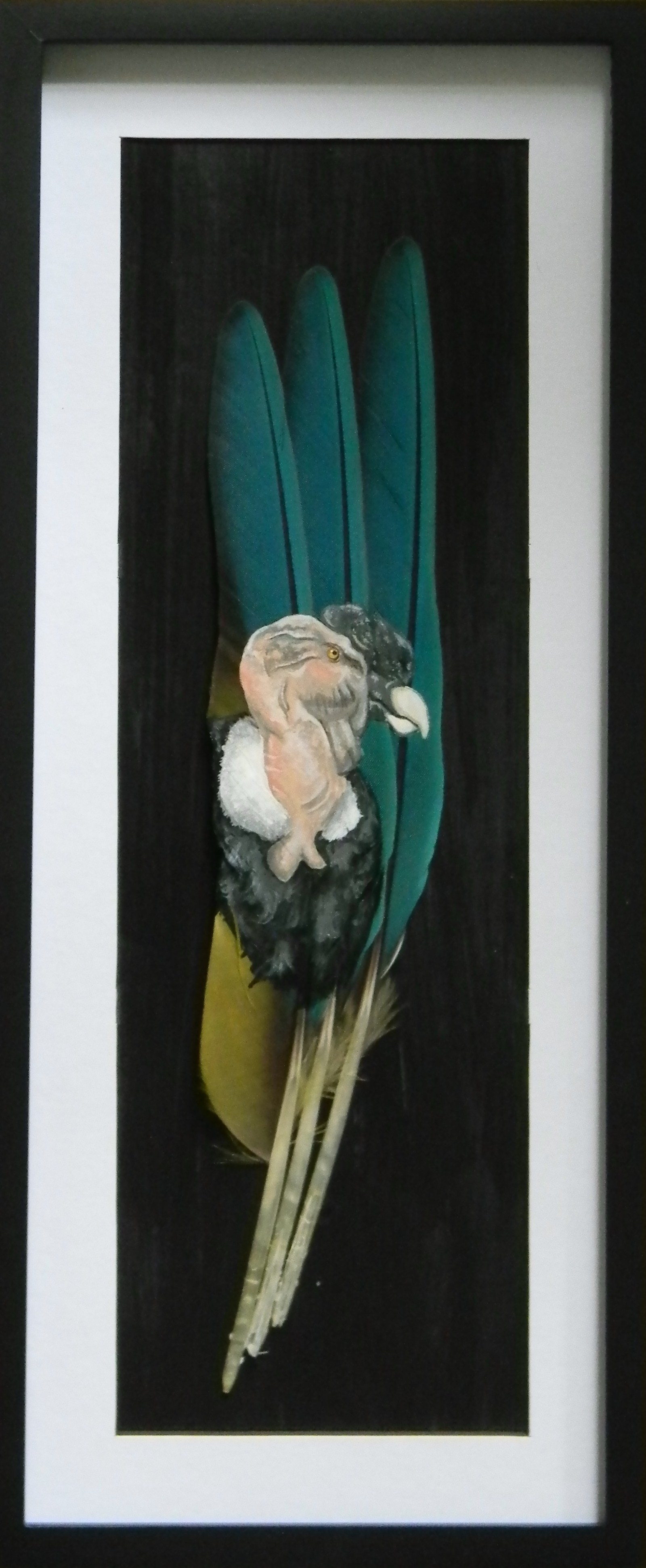 Hand painted feather-andean condor