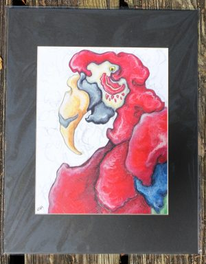 green winged macaw matted print